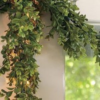 Lit Boxwood Garland