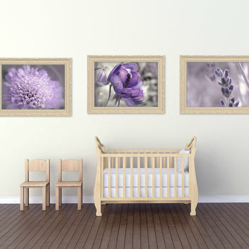 Fine Art Photograph Floral Wildlife,Cats,Dogs,30 percent Savings,Combine Any 3,You choose 3,wall art,nature,30percent off when you buy three