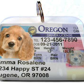 Oregon driver license Personalized Custom ID Tags for dogs and cats Double Sided pet tags
