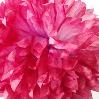 Scarlet & Light Pink Pom / Wedding Decoration  / Birthday / Party Decoration / Baby Shower Decoration / Nursery Decoration