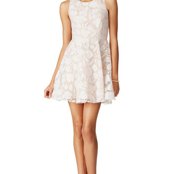Jay Godfrey Tori Garden Dress