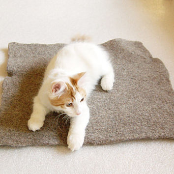 Eco felted pet bed - wool cat bed - felt dog bed - handmade pet mat - felt cat bed - small dog bed - washable dog bed - wool puppy bed