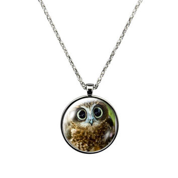 Surprised Owl II, Jewelry stainless steel casing crystal glass pendant embedded with a big wide open eyes look.