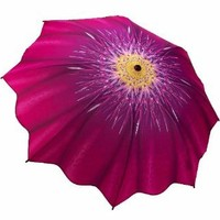 "Amazon.com: "" Dreamscape "" - Galleria Compact Folding Umbrella Auto Open/Auto Close: Clothing"