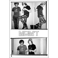 MGMT - Import Poster