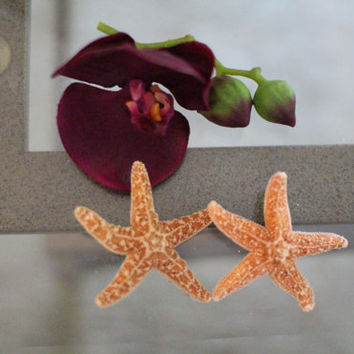 Starfish Barrette Double, Mermaid Costume, Starfish hair clip,Beach Weddings