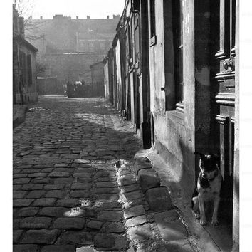 Photographic print, 255 Venue d'Alesia - Circa 1946, street in Paris, France