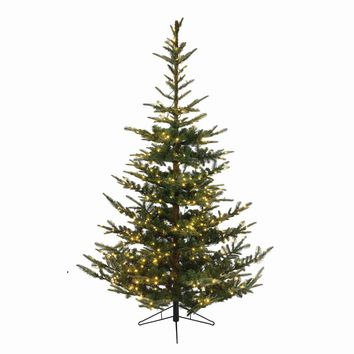 "6.5' x 48"" Pre-Lit Everlands Nobilis Fir Artificial Christmas Tree - Warm Clear LED Lights"