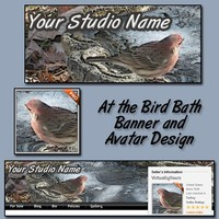 A Bird Bath Banner Design and Avatar