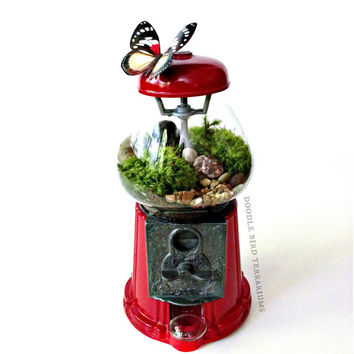 Terrarium / Vintage Carousel Gumball Machine Upcycled Recycled