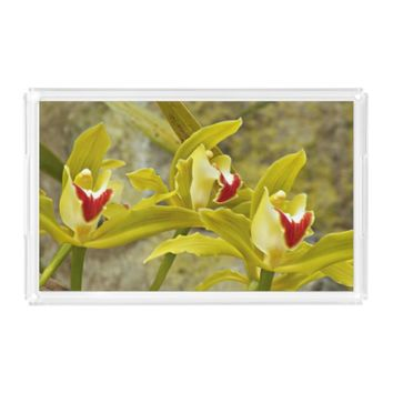 Green Cymbidium Orchids Floral Serving Tray