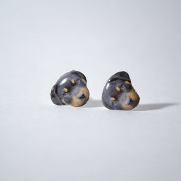Rottweiler Dog cute Jewelry surgical steel Earrings , tiny jewelry, handmade items, Unique Gift with linen cotton bag