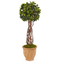 Artificial Tree -3 Foot English Ivy Tree with Terracotta Planter