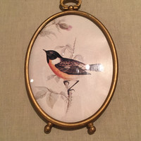 Oval Frame with Bird Print/Brass-Like Paint/Vintage/Convex Glass