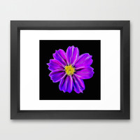 Purple Flower Framed Art Print by Photography By Pamela
