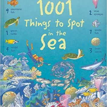 1001 Things to Spot in the Sea Hardcover – June 1, 2009