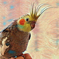 Custom Bird Portrait - Bespoke Bird Painting - Ready to Hang - Perfect gift for bird lovers!
