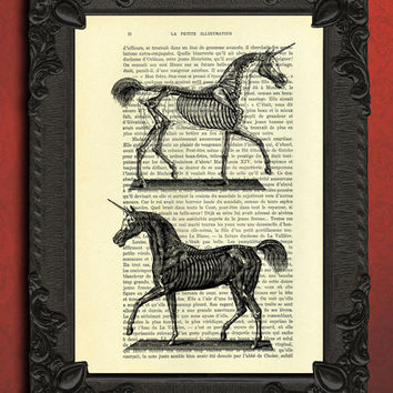 unicorn anatomy dictionary art - horse dictionary art print, unicorn art print, unicorn collage