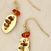 Amber Trinket Earrings