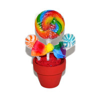 Mini Lollipop Candy Arrangement (Rainbow) Customizable for place settings