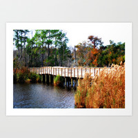 Fall Across a Pond Art Print by Erin Mac Photography