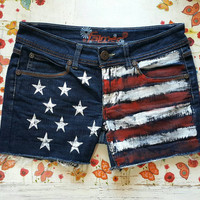 AMERICAN FLAG SHORTS Denim Shorts Low Waisted Shorts Shorts Coachella Denim Shorts Patriotic Shorts American Flag Shorts Size Small/ Medium