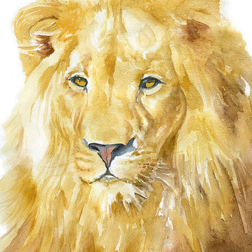 Lion Watercolor Painting - 11 x 14 - Giclee Print - Fine Art Print - African Animal - Nursery Art