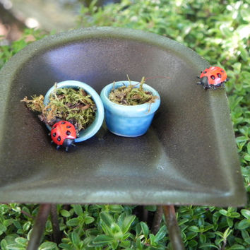 Fairy Garden Wheelbarrow - miniature ladybugs blue pots