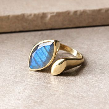 Journey of Discovery Labradorite Ring