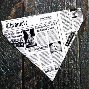 Funny Newspaper Dog Bandana, Over the Collar