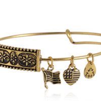 Alex and Ani charm bracelet,a perfect gift !