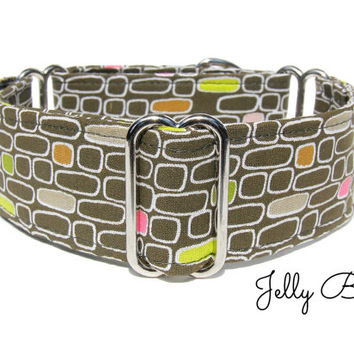 Martingale Collar - Jelly Bean, 2 inch martingale collar, 1.5 inch martingale collar, italian greyhound collar, whippet collar, dog collar