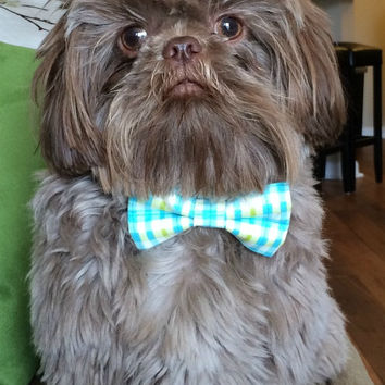 Dog Collar with bow tie set-Pastel Blue Plaid((Mini,X-Small,Small,Medium ,Large or X-Large Size Bow tie)- Adjustable