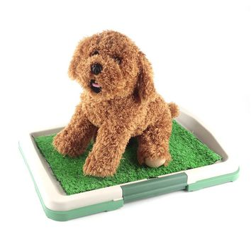 Potty Training Tray for Puppies