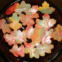 Two Dozen Gum Paste Autumn Varigated Leaves Dusted with Edible White Pearl Dust