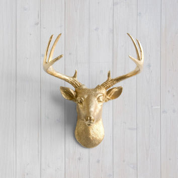 The MINI Virginia Gold Faux Taxidermy Resin Deer Head Wall Mount | Gold Stag w/ Colored Antlers