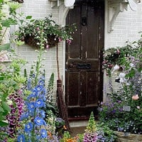 All sizes | cottage garden | Flickr - Photo Sharing! on we heart it / visual bookmark #17493428