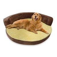 Ortho Circular Day Bed