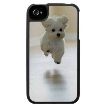 Maltese Puppy 2 Iphone 4/4s Case from Zazzle.com