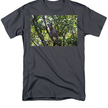 Raccoon - Men's T-Shirt  (Regular Fit)