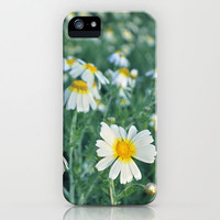 Spring daisies iPhone Case by Guido Montañés