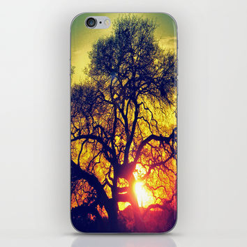 Through the trees iPhone & iPod Skin by DuckyB (Brandi)