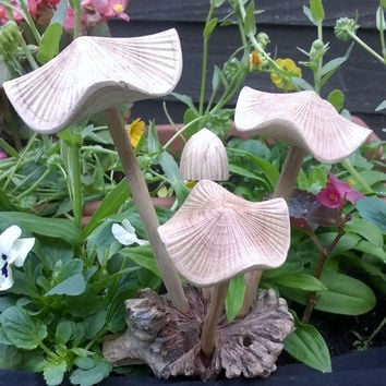MUSHROOMS Beautiful Hand Carved Mushrooms FREE UK p&p