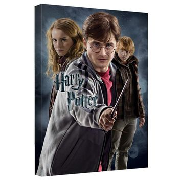 Harry Potter - Seventh Year Canvas Wall Art With Back Board