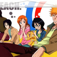 Bleach Japanese Anime Wall Scroll Poster and Banner 1