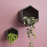 Hexagon Wall Hung Planter | Black Small