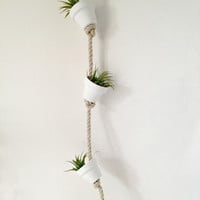 Pure white clay pot with air plants or succulents hanging from hemp rope/wall decor- air plant mini terracotta pot