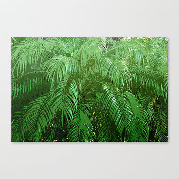 Jungle Palms 3 - Gallery Wrap Canvas, Green Palm Tree Fronds Decor, Dorm Apartment Style Wall Art Hanging. In 8x10 11x14 16x20 20x24 24x36