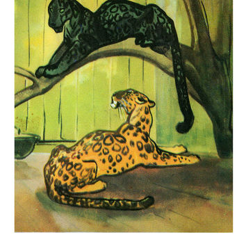 Vintage «Kitties» Postcard (Artists N. Stroganova, M. Alekseev) - Printed in the USSR, «Fine Art», Moscow, 1969