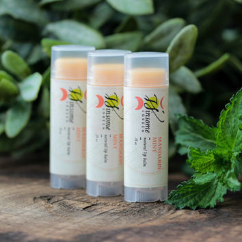 Lip Balm / All Natural Mandarin Mint